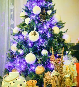 Tanti Cari Auguri Di Buon Natale.Auguri Di Buon Natale E Felice Anno 2015 Hotel Sottomarina Jonni